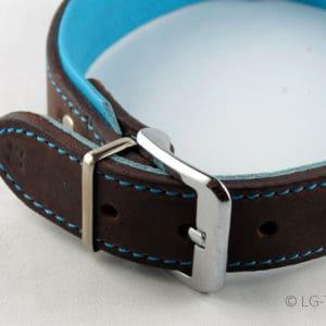 LG Hundehalsband Detailaufnahme in türkis braun