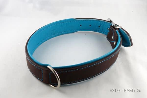 LG Hundehalsband in türkis-braun