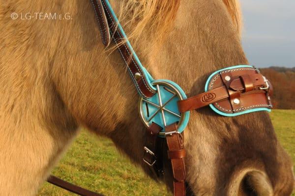 LG PLUS am Pferd türkis-braun