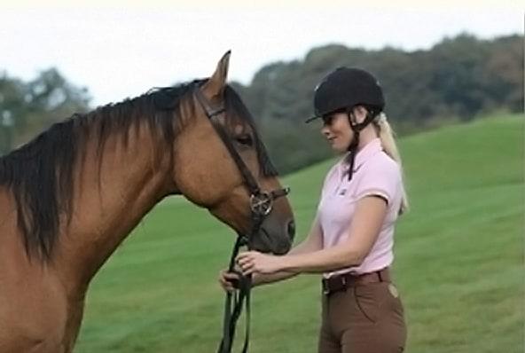 Linda Weritz M.A., Ausbildung und Verhaltenstherapie von Pferden