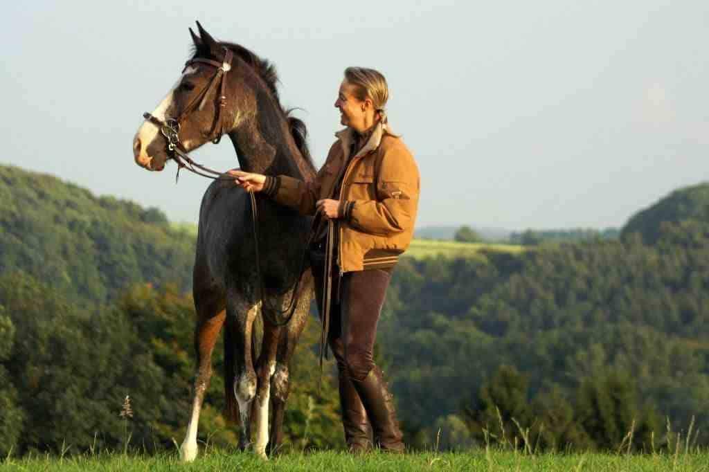 Mit Pferd spatzieren mit LG Zaum