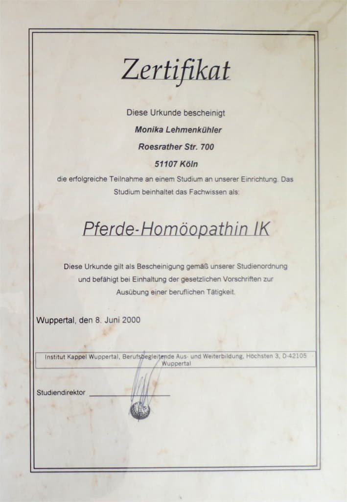 Studium Homöopathie