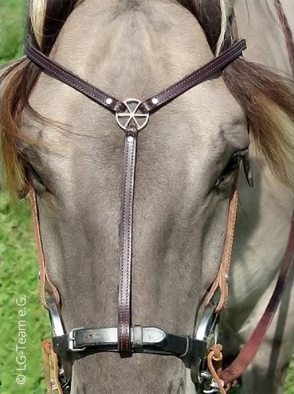 Triadem Kopfschmuck, Pferd Natur